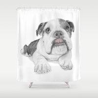 A Bulldog Puppy Shower Curtain
