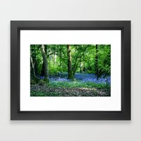 Bluebell Dell Framed Art Print