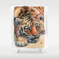 Resting Tiger Cub 896 Shower Curtain