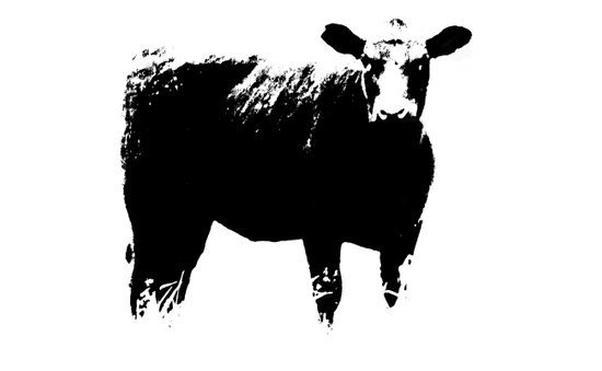 Calf No. 1 Art Print
