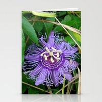 Passion Vine Flower Stationery Cards