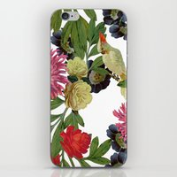 Nicolette Day iPhone & iPod Skin