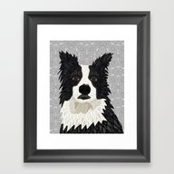 Beautiful Border Collie Framed Art Print