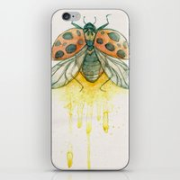 Ladybird iPhone & iPod Skin