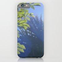 iPhone & iPod Case featuring Sun/Trees by Natasha Crosby