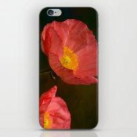 Spring Poppy iPhone & iPod Skin