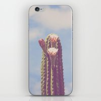 Happy Cactus :) iPhone & iPod Skin