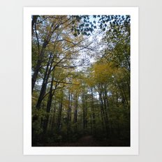 Out in the Woods Art Print