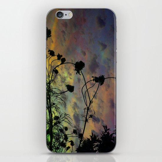 Prism Sun iPhone & iPod Skin