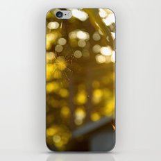 These Fragile Threads iPhone & iPod Skin