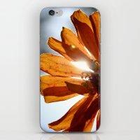 Shine Through  iPhone & iPod Skin