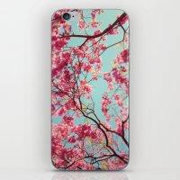 Spring Sky iPhone & iPod Skin
