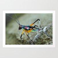 Rainbow Bug Art Print
