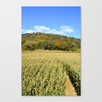 Corn Field And Colorful … Canvas Print