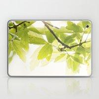 the Daily Sun Laptop & iPad Skin