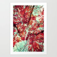 Candied Fall Art Print