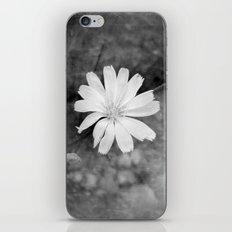 Your Secret iPhone & iPod Skin