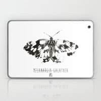 Butter flies - Melanargia_Galathea Laptop & iPad Skin