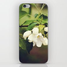 spring blossom. iPhone & iPod Skin