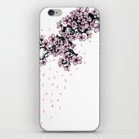Sakura Cherry Blossom iPhone & iPod Skin