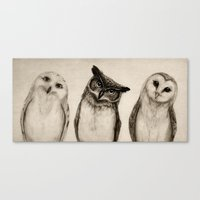 The Owl's 3 Canvas Print