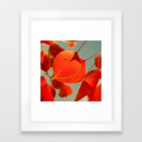 Orange Framed Art Print