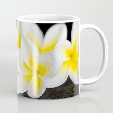 Plumeria obtusa Singapore White Mug