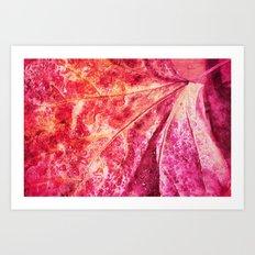 leaf and waterdrops Art Print
