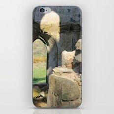 Tower Ruins iPhone & iPod Skin