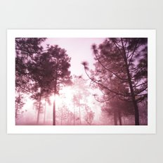 Sunrising Art Print