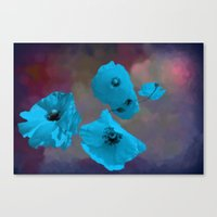 FLOWERS - Poppies blue Canvas Print