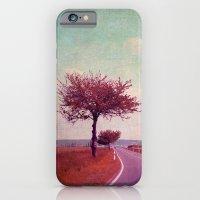 Summer & Sun iPhone 6 Slim Case