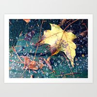 Fall in the Spider's Web Art Print