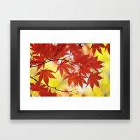 Fall foliage Framed Art Print