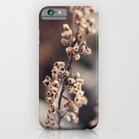 iPhone & iPod Case featuring Amidst Winter's Grip by Melissa Contreras