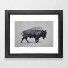 The American Bison Framed Art Print