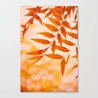 Sun Kissed Canvas Print