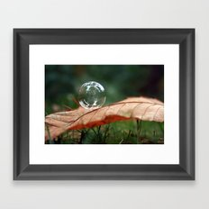 Leaf Bubble Framed Art Print