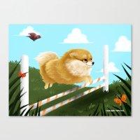 Pomeranian JUMP Canvas Print