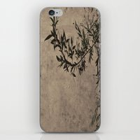 Oriental Breeze iPhone & iPod Skin