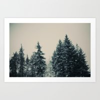 Winter Fancy Art Print
