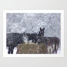 Cold Winter Art Print