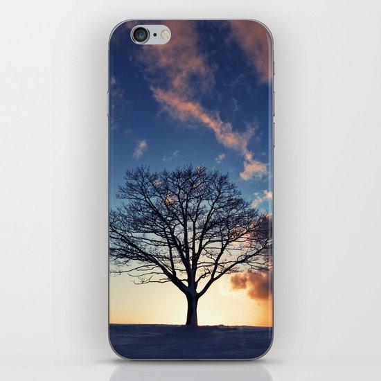 Winter Sunset iPhone & iPod Skin