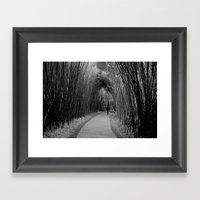 Bamboo Path  Framed Art Print