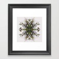 Epiphyte Kaleidoscope Framed Art Print