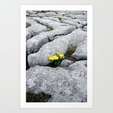 Safe In The Rock Art Print