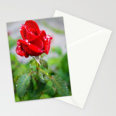 rose with raindrops  Stationery Cards
