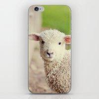 Little Lamb I iPhone & iPod Skin