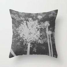 BW Spring Throw Pillow