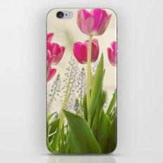 Spring Presentation iPhone & iPod Skin